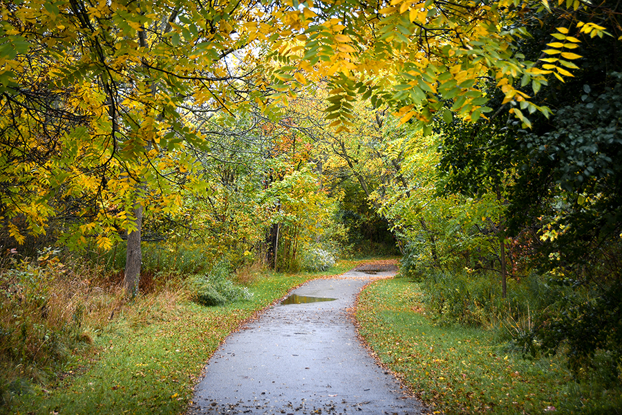 South Richvale Greenway